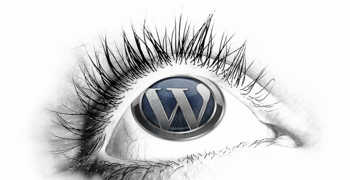 WordPress Top Professional Design