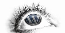 WordPress Top Professional Design